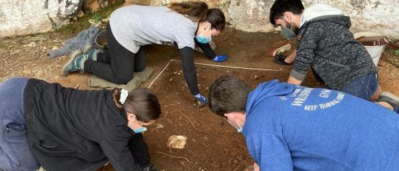 Alumnos de Arqueología de la UPV trabajan en la excavación del Abric de l'Hedra | LEVANTE-EMV