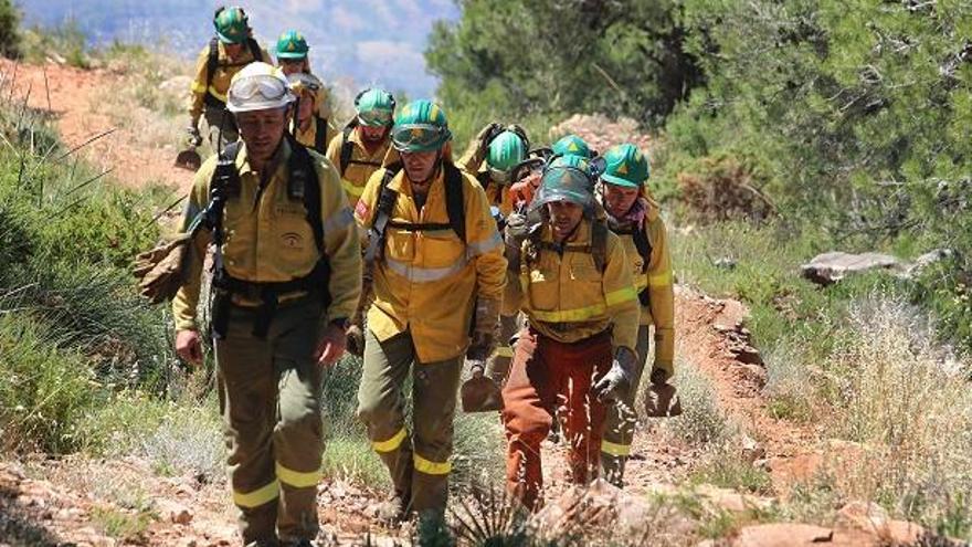 Extinguido un incendio forestal en Gaucín