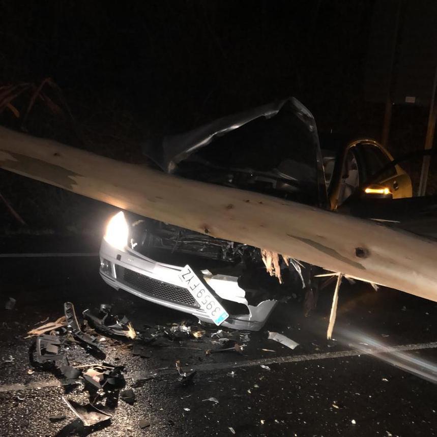 El coche con el tronco sobre el capó, tras el accidente.