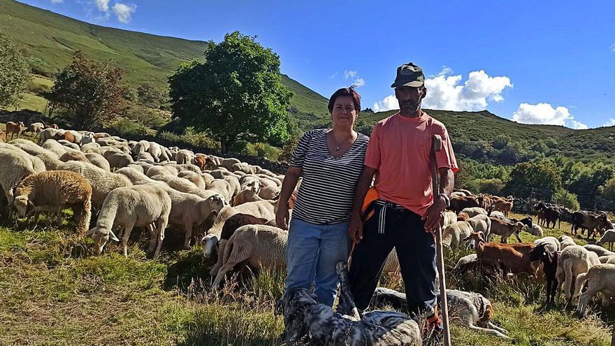 Carrera de relevos en el agro gallego