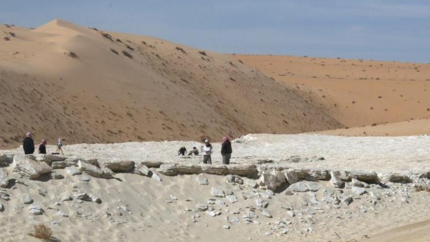 La evidencia más antigua de seres humanos en Arabia data de hace 120.000 años