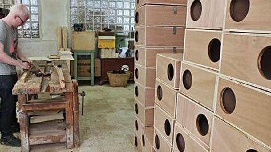 El Govern desbloquea cinco proyectos de la ecotasa en las Pitiusas por 8,3 millones
