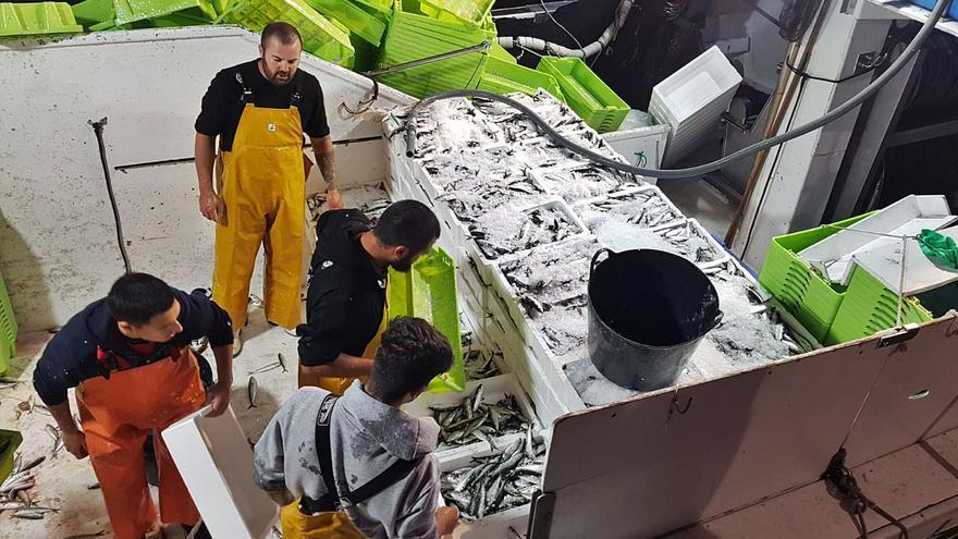 El sector pesquero de Marbella teme los efectos de las cenizas en especies que viven en las orillas