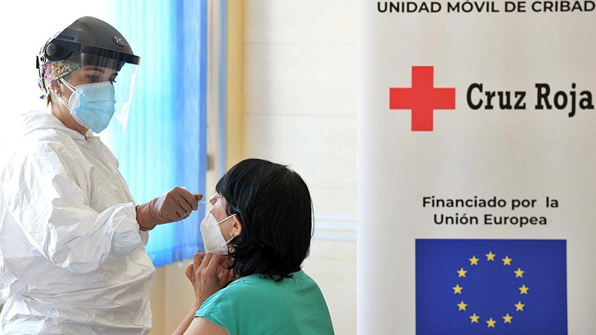 Test de coronavirus realizados por Cruz Roja en Castilla y León