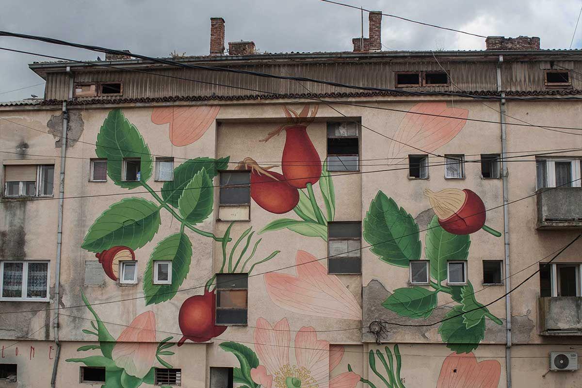 """Doa Ocampo-Mural """"Rosa canina"""" en un edificio de Feriza (Kosovo)"""