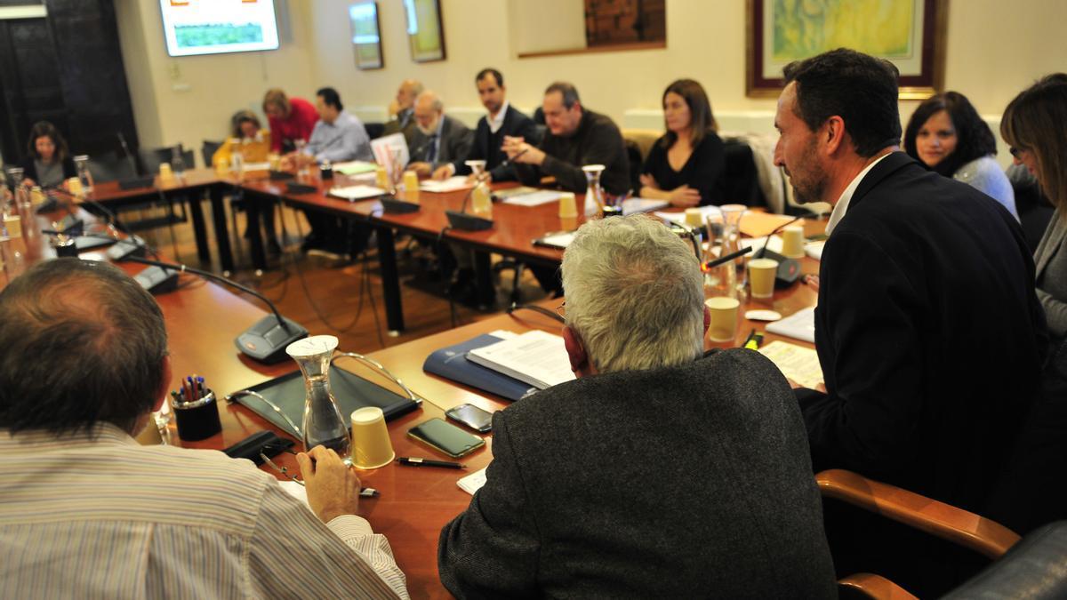 Consejo Social municipal celebrado en Elche en 2019 antes del estado de alarma.