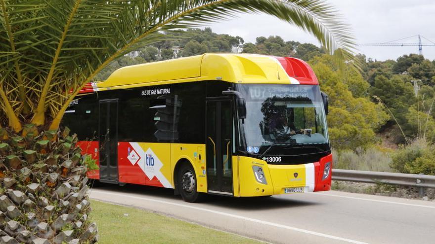 Mallorca ohne Mietwagen: Mit Bus und Bahn über die Insel
