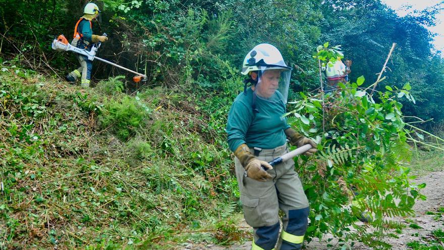 Montes a prueba de fuego antes de los incendios