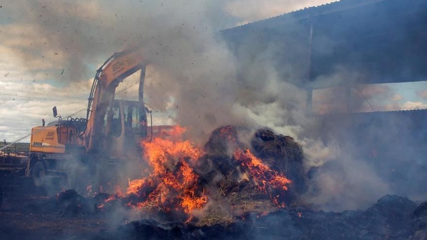 Estabilizado el incendio de Zamora, el mayor del verano