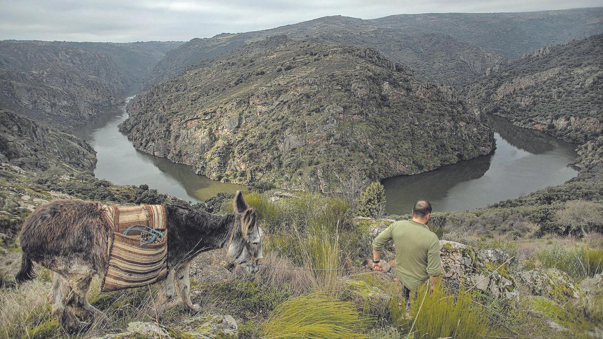 Vista de Los Arribes del Duero desde Pinilla de Fermoselle.