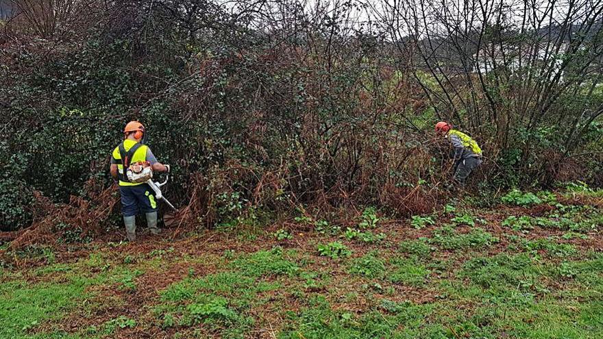 Realizan trabajos de conservación y limpieza en el río Somoza a su paso por el Concello de A Estrada