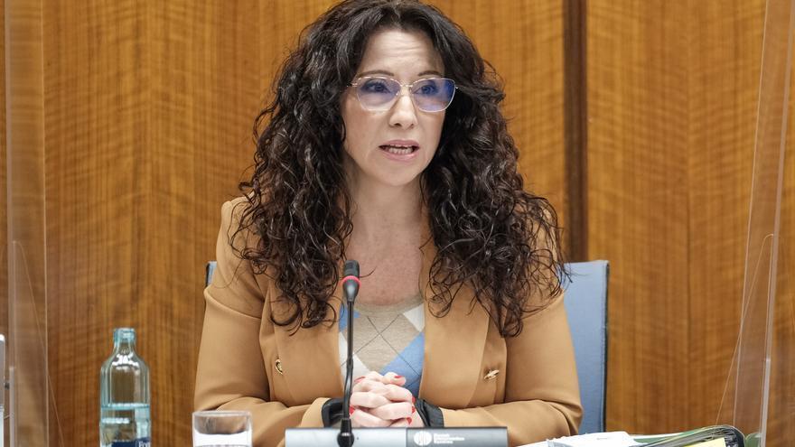 La Junta ha dado atención integral a los familiares de las víctimas de la agresión del Melillero