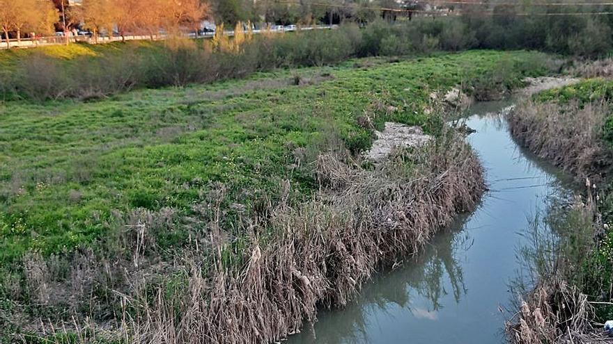 El Ayuntamiento de Castro del Río reclama ayuda para limpiar el cauce del Guadajoz