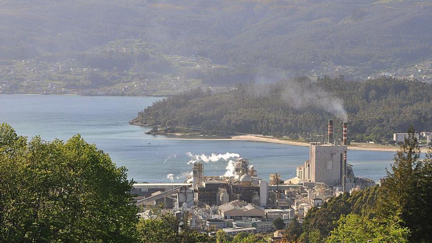 Ence vincula una inversión de casi 400 millones a su permanencia en Lourizán