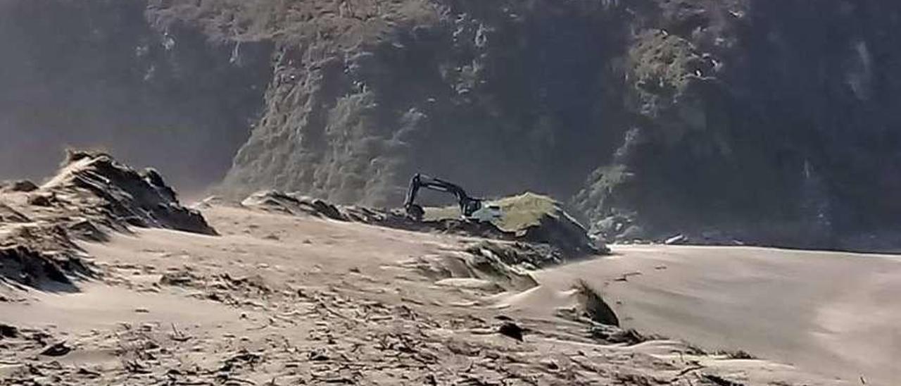 Una pala trabajando en la zona del frente dunar de Barayo.