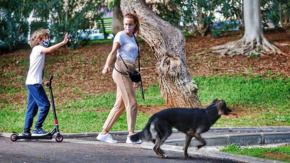 Una familia camina con su mascota y con las mascarillas puestas por el parque de La Granja de la capital tinerfeña.