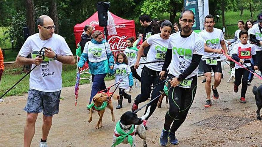 Can We Run Zamora: Una gran fiesta canina