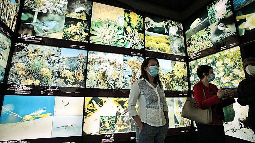 Museos de Tenerife cumple tres décadas con el reto de renovar sus colecciones