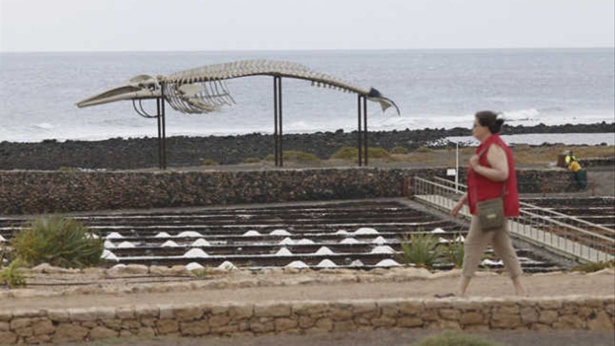 Buscan a una persona que practicaba apnea en  la costa de Fuerteventura