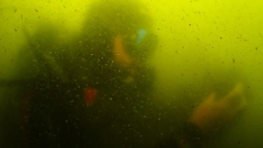 """Un recorrido en imágenes del fondo del Mar Menor muestra que """"nada ha mejorado en cinco años"""""""