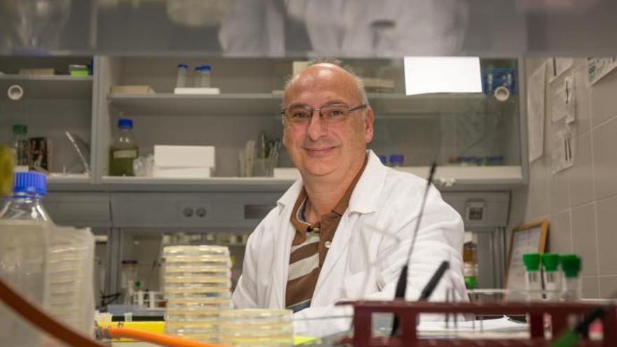 El valenciano Francis Mojica se queda a las puertas del Nobel de Medicina