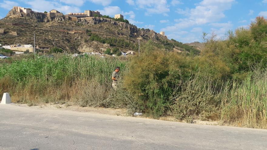 Alertan sobre el estado de las ramblas de Lorca