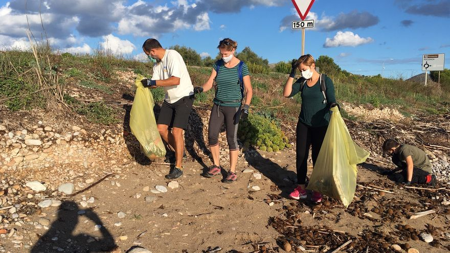 Jornada de recogida de plásticos en la playa que une Alcúdia y Pollença