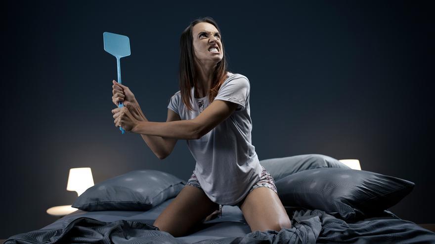 Descubre cómo librarse de los mosquitos por la noche