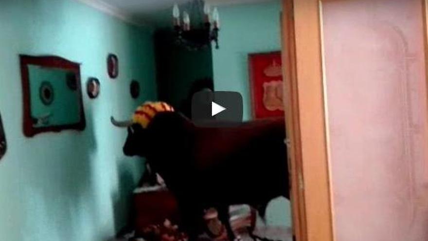 VÍDEO: Un toro entra dins una casa durant uns bous al carrer