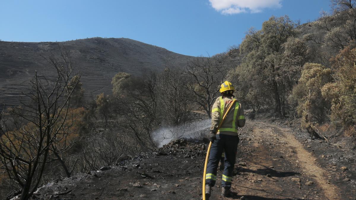 Pla mitjà de dos bombers treballant en l'incendi de Llançà