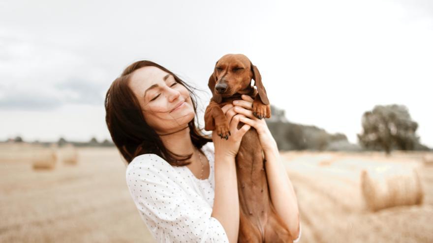 ¿Entrenar la mente de tu perro? Sí, es posible gracias a estos cinco ejercicios con lo que lo pasaréis en grande