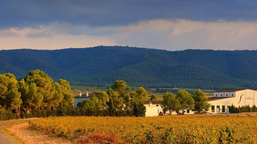 Casa Los Frailes, una vuelta a los orígenes del vino valenciano