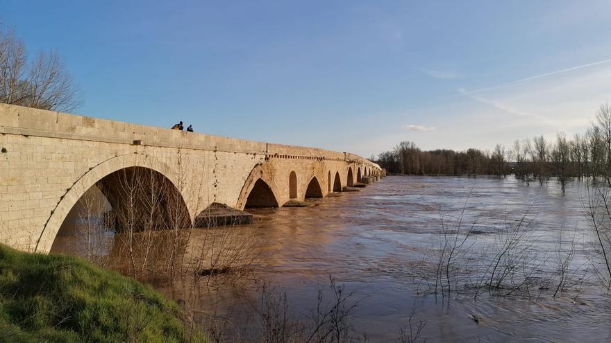 VIDEO   Así de crecido está el río Duero a su paso por Toro