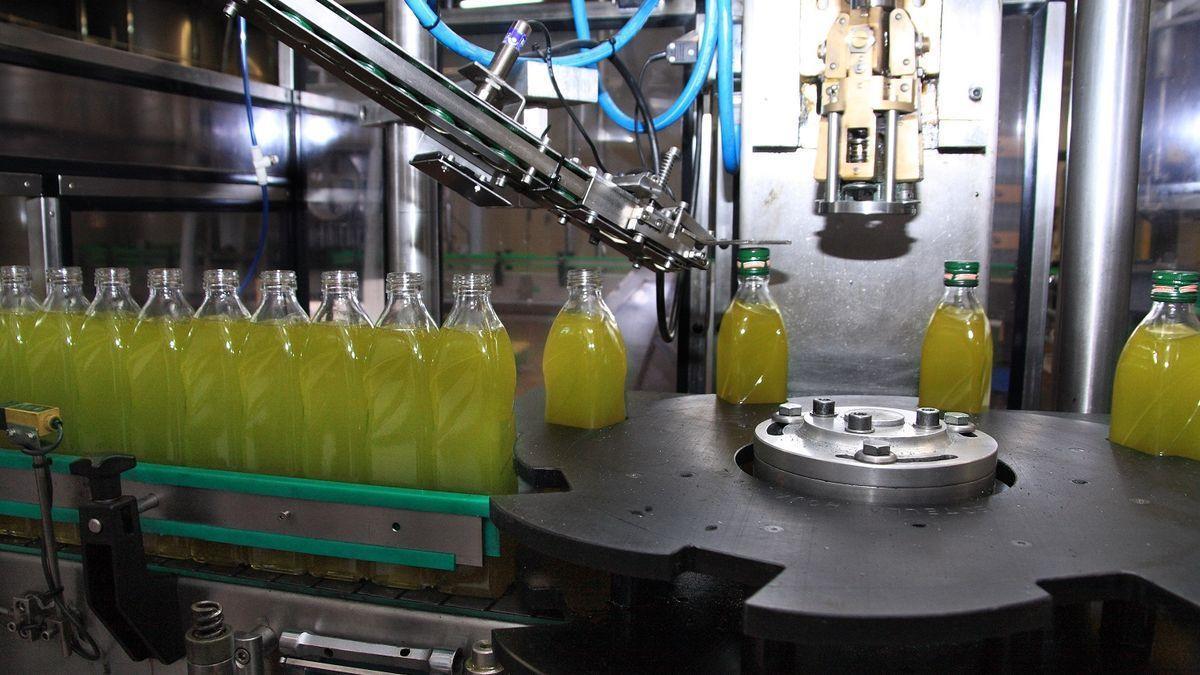 Planta envasadora de aceite de oliva.