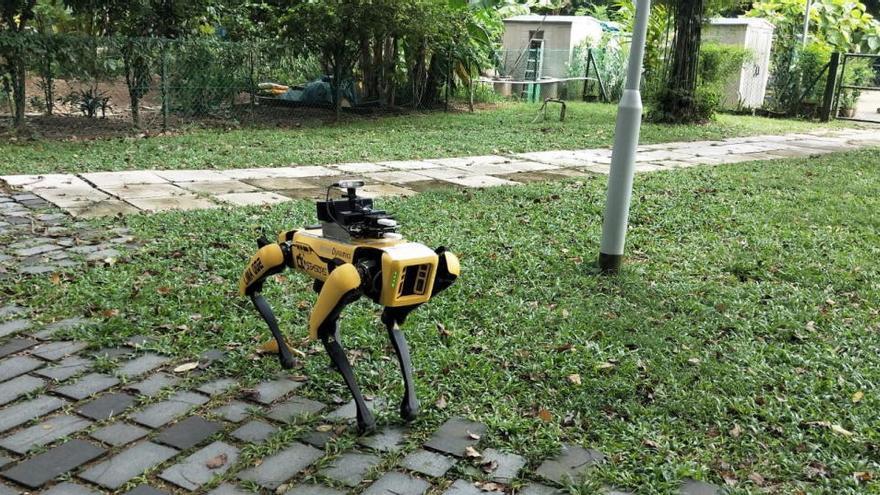 Un perro robot mantiene la distancia social en los parques de Singapur