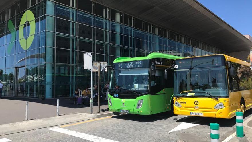 Guaguas Municipales viaja a Tenerife