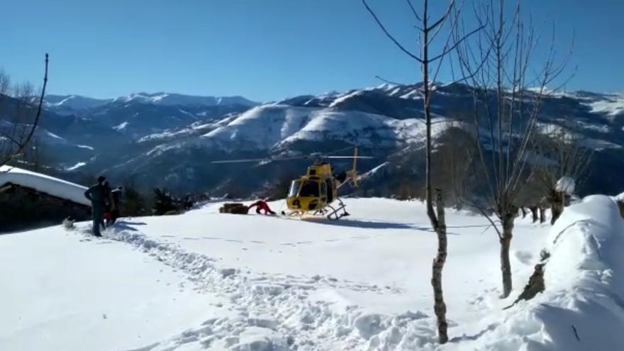 Bomberos  y Seprona llevan comida a los caballos atrapados por la nieve en Aller