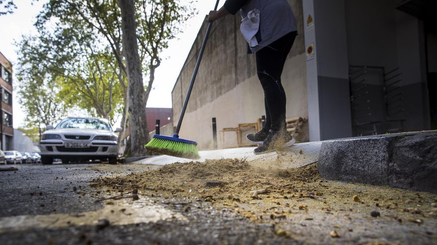 Temporada leve para los 75.000 alérgicos de Castellón por la baja contaminación