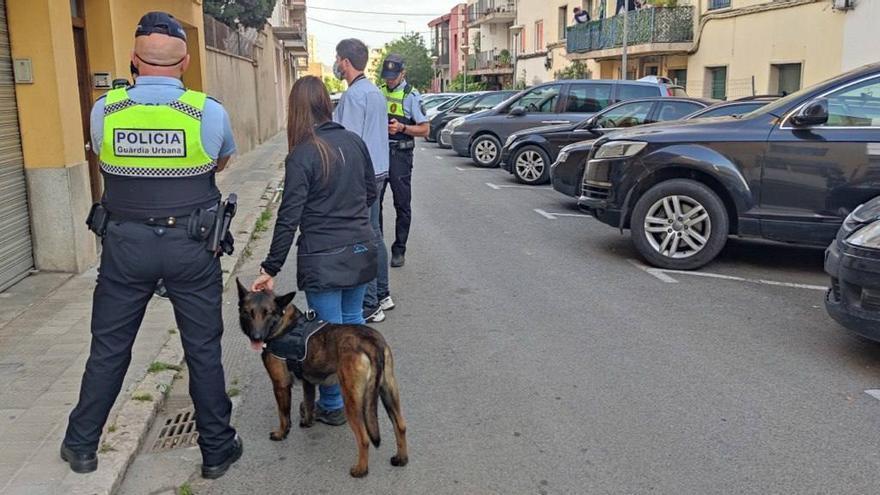 Un dispositiu amb gossos per detectar drogues a Figueres acaba amb cinc denúncies