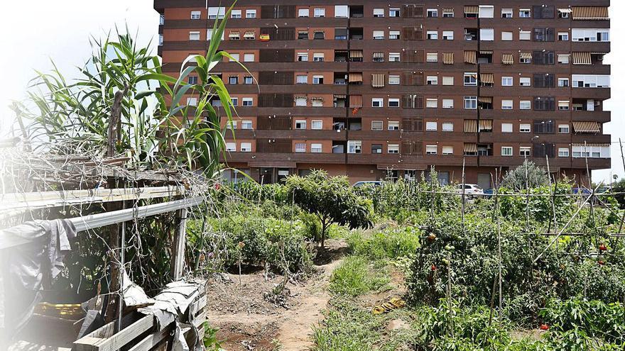 El 30% de los vecinos necesita jardines frente al 1,7% que pide huertos urbanos