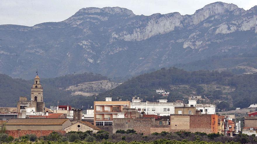 La Generalitat protege la riqueza botánica  de la Serra de Corbera