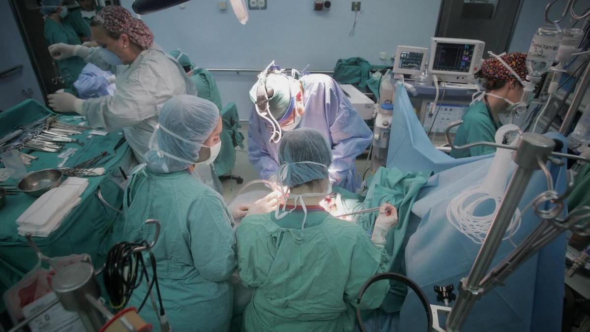 España, líder en transplantes.
