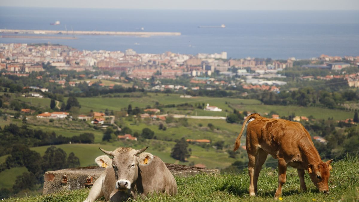 Gijón, desde Caldones-Cordal de Deva.