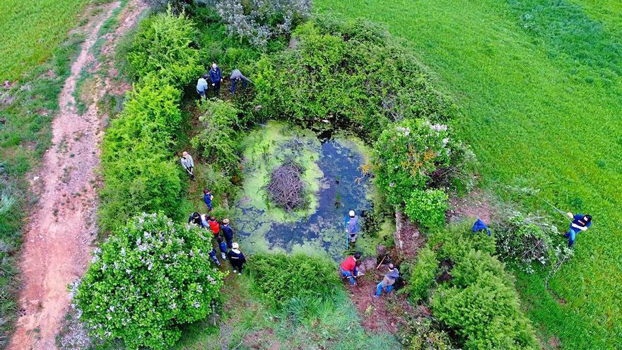 Un projecte de custòdia  de territori protegeix la biodiversitat de Casa Albets