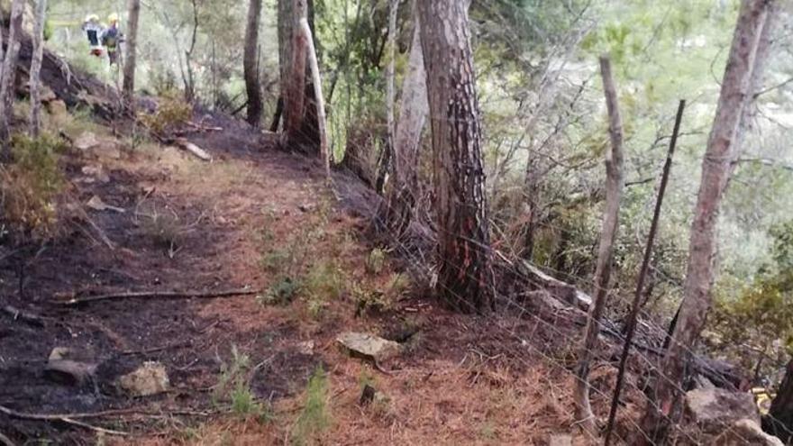 Waldbrand bei Andratx auf Mallorca