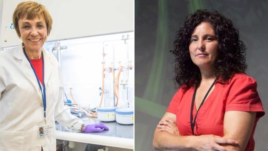 Las científicas valencianas en la élite