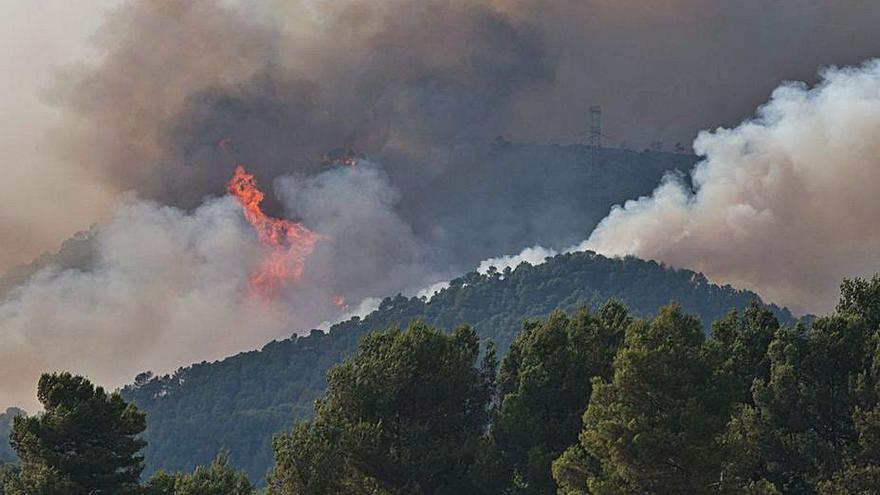 Un incendio forestal obliga a desalojar y a confinar pueblos en Barcelona
