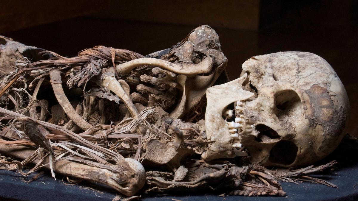 Momia expuesta en el Museo Canario.