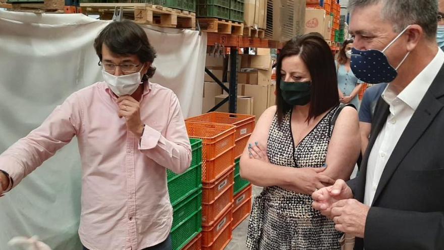 Berjuan venderá sus muñecas antimosquitos en África y Brasil