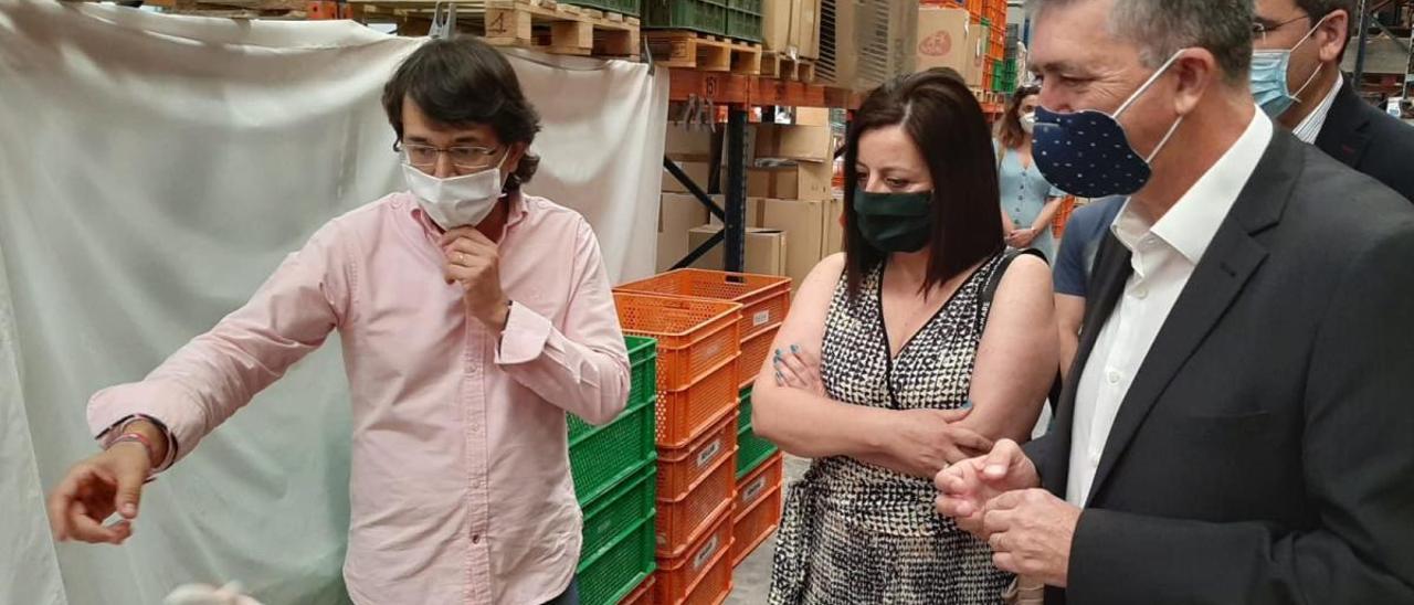 El gerente de Berjuan, César Bernabeu, muestra la fábrica al conseller Rafael Climent y su equipo.